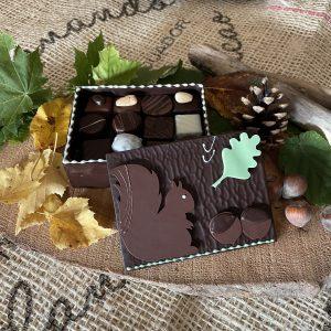 Coffret tout chocolat 270g écureuil