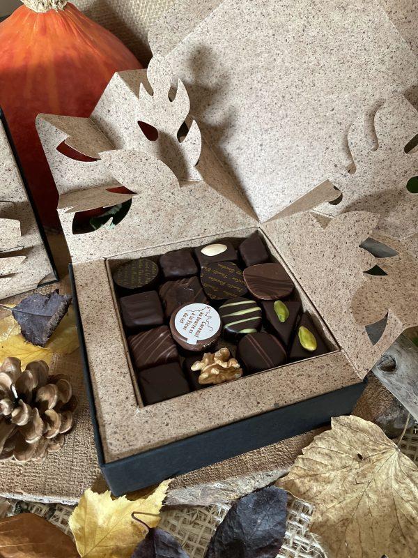 Coffret Pop-up Automne 270g chocolats